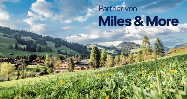 Miles & More Partner